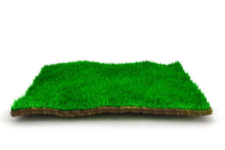 3d grass lawn, on white background photo