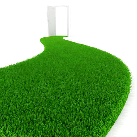 3d fresh green grass road Stock Photo - 11472225