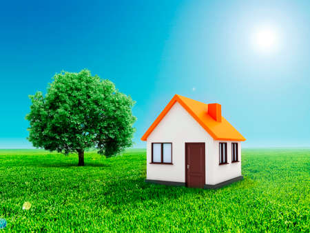 grass sky: 3d house, green grass and clear blue sky