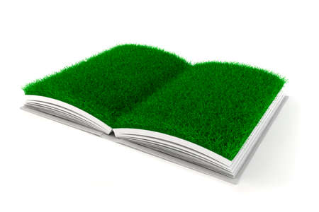 3d open book with grass paper photo