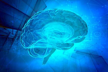 human head: 3d human brain on abstract tech background