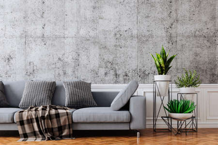 3d beautiful interior with couch and concrete vintage wall Banque d'images - 129494576