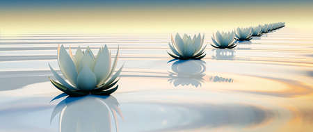 3d lots flower on calm ripple water