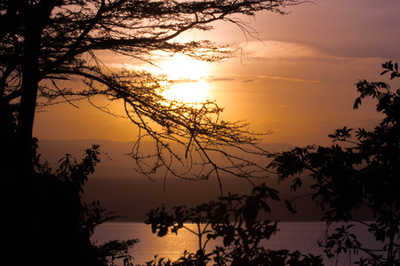 Trees, Bushes and Lake in Front of African Sunset