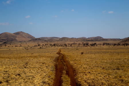 Brown Muddy Road in African Grasslands In Front of Hills Stock Photo