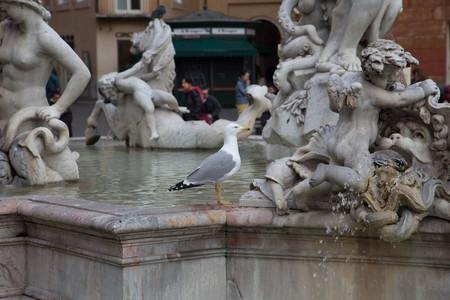 Gull on Historic Fountain