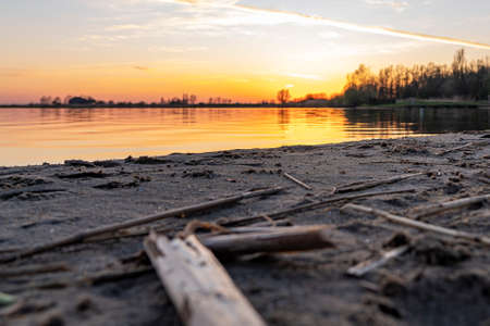 Plant residues lie on the bank of lake Zoetermeerse Plas during sunset in Zoetermeer, Netherlands Stock Photo