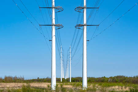 A long line of new high-voltage pylons in the Bentwoud near Zoetermeer, the Netherlands