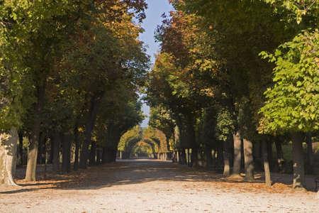 sissy: Castle Park Schoenbrunn, Vienna