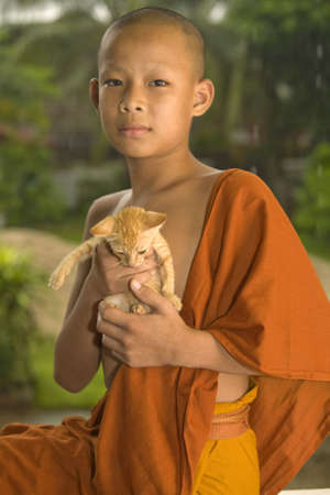 novice: Buddhist novice with a cat