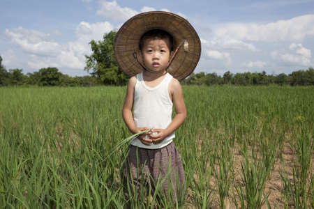 Child of Thailand in the rice paddy photo