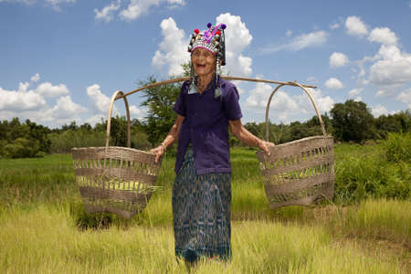old Asian woman, Akha, at the work on a rice field photo