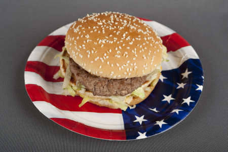injurious: Hamburger on paper plate america style
