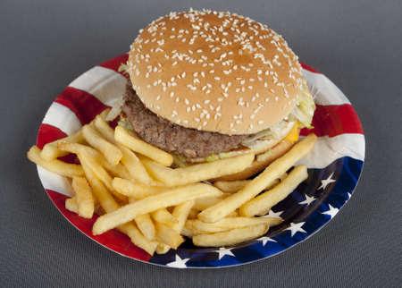 injurious: Hamburger on paper plate america style