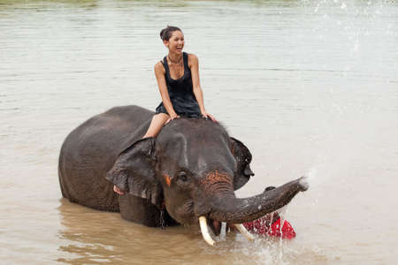 thai girl: ride an elephant Stock Photo