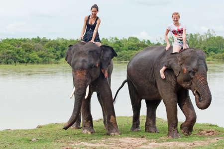 ride an elephant Stock Photo
