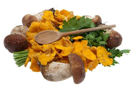 Mushrooms, boletes and golden chanterelle photo