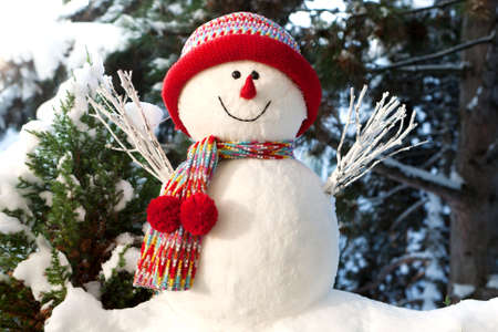 sylvester: Snowman Stock Photo