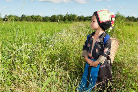 asian hmong girl on rice paddy Stock Photo - 10552939