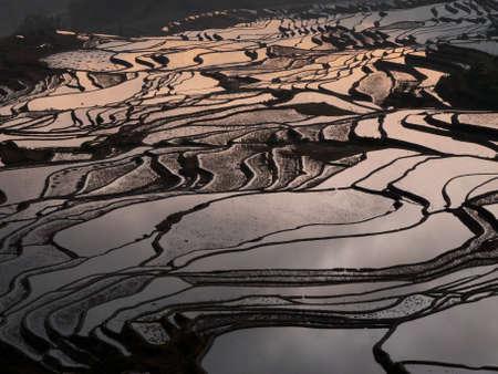 yuanyang: Rice terraces Yuanyang, China
