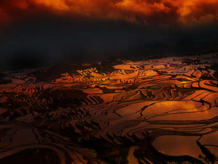 Sunset at terraced rice fields, China Stock Photo - 11763282