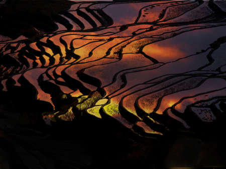Sunset at terraced rice fields, China Stock Photo - 11763281
