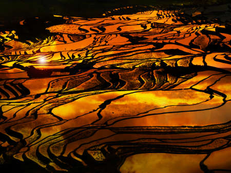 Sunset at terraced rice fields, China Stock Photo - 11763320