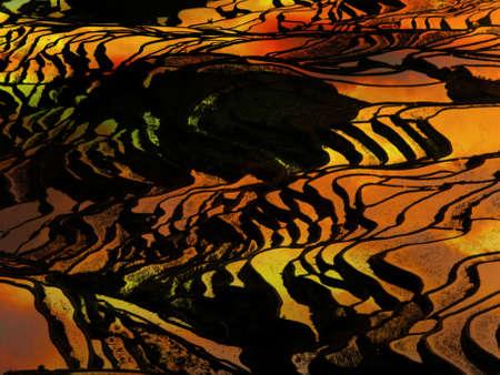 yuanyang: Sunset at terraced rice fields, China