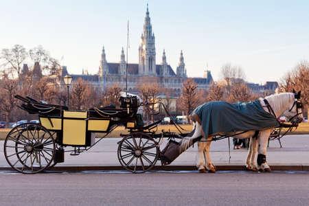 wiedeń: Przewóz Fiaker w Wiedniu, Austria Zdjęcie Seryjne