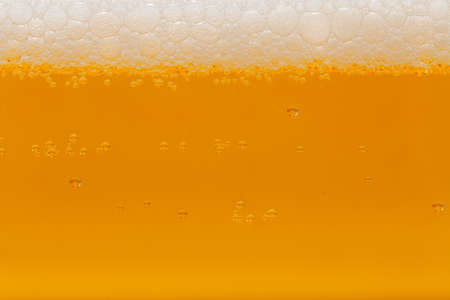 cold beer Stock Photo - 13183666