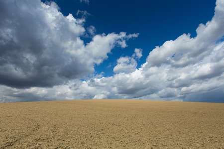 cultivated land: cultivated land with dramatic sky