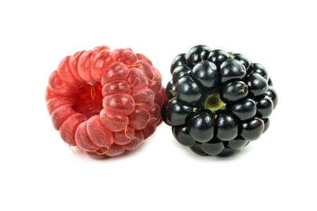 brambleberry: Blackberry and Raspberry