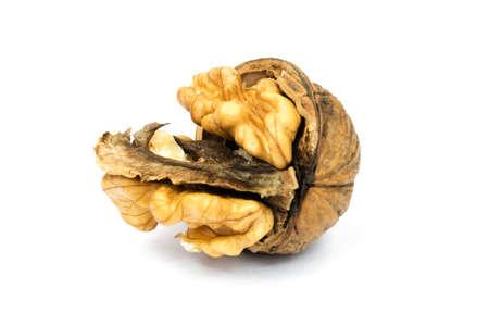 cracked: Walnut cracked