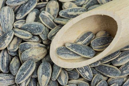 kernel: Sunflower Kernel Roasted