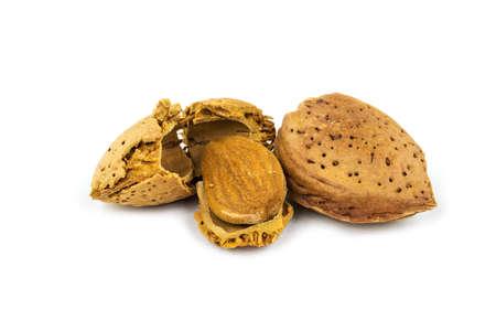 nutshell: Almond with cracked nutshell
