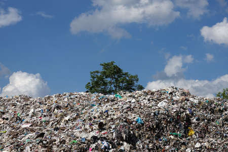 landfill: Landfill in the nature
