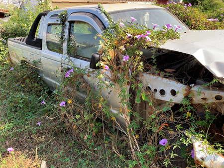 Car Wreck Environmental Disaster Reklamní fotografie