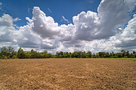 Agriculture Field With Clouds, landscape with cumulus clouds