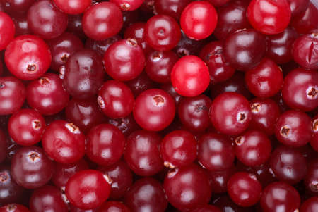Abstract background of red cranberries Stock Photo