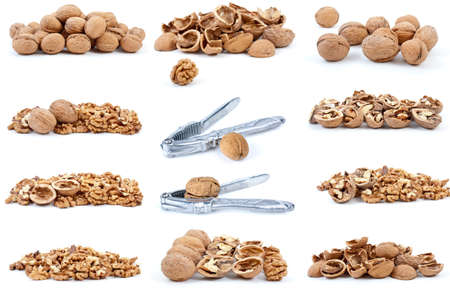 shelled: Set of walnuts isolated on the white background