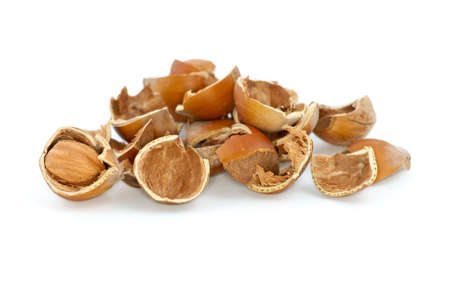 avellan: Small pile of hazelnuts shells and one cracked isolated on the white background