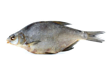 abramis: Dried bream isolated on the white background Stock Photo