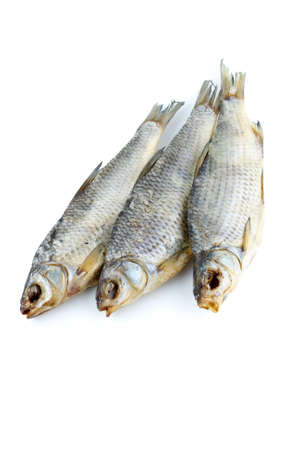 rutilus: Three sea roach fishes isolated on the white background