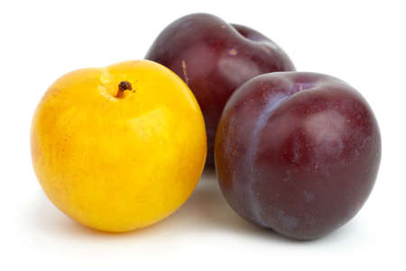 Two violet plums and one yellow isolated on the white background photo
