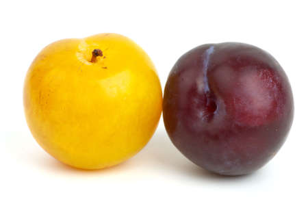 Yellow and violet plums isolated on the white background photo