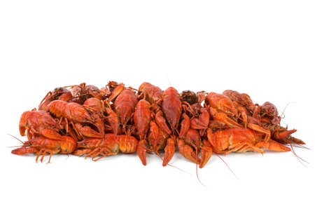 Pile of boiled crawfishes isolated on the white background photo