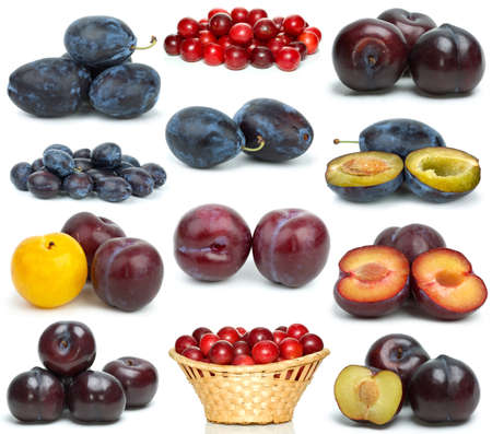 Set of different plums  isolated on the white background photo