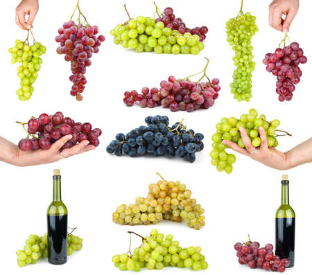 Set of different grapes  isolated on the white background Stock Photo