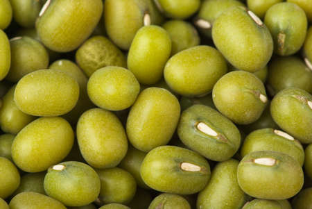 munggo: Abstract background  Green mung beans closeup