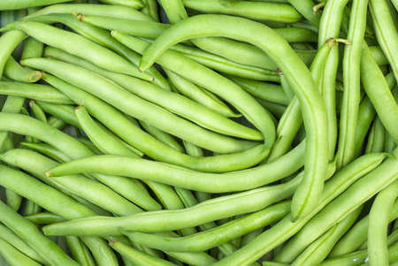 Abstract background: green wax beans Stock Photo - 14296564